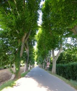Villes sur Auzon entrance to town