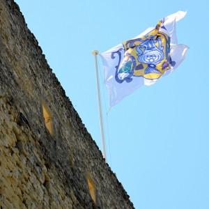 chateau flag
