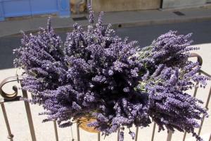 more lavendar