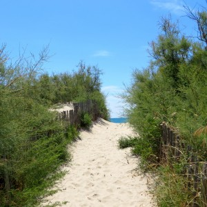 entrance beach